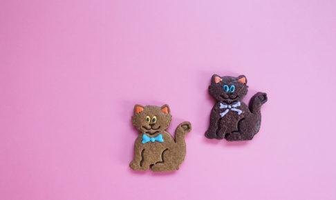 焼き菓子 お取り寄せ cafe snug クッキー アイシング プレゼント
